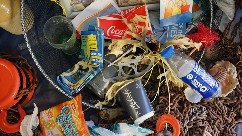 海洋垃圾.png