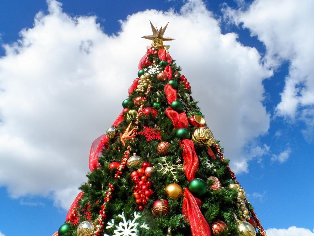 圣诞节2.jpg