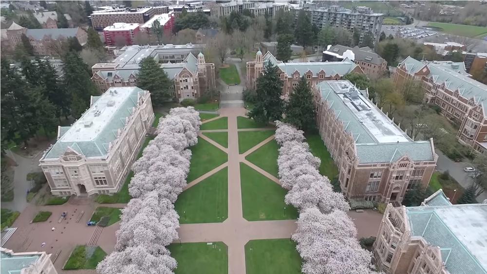 华盛顿大学.png