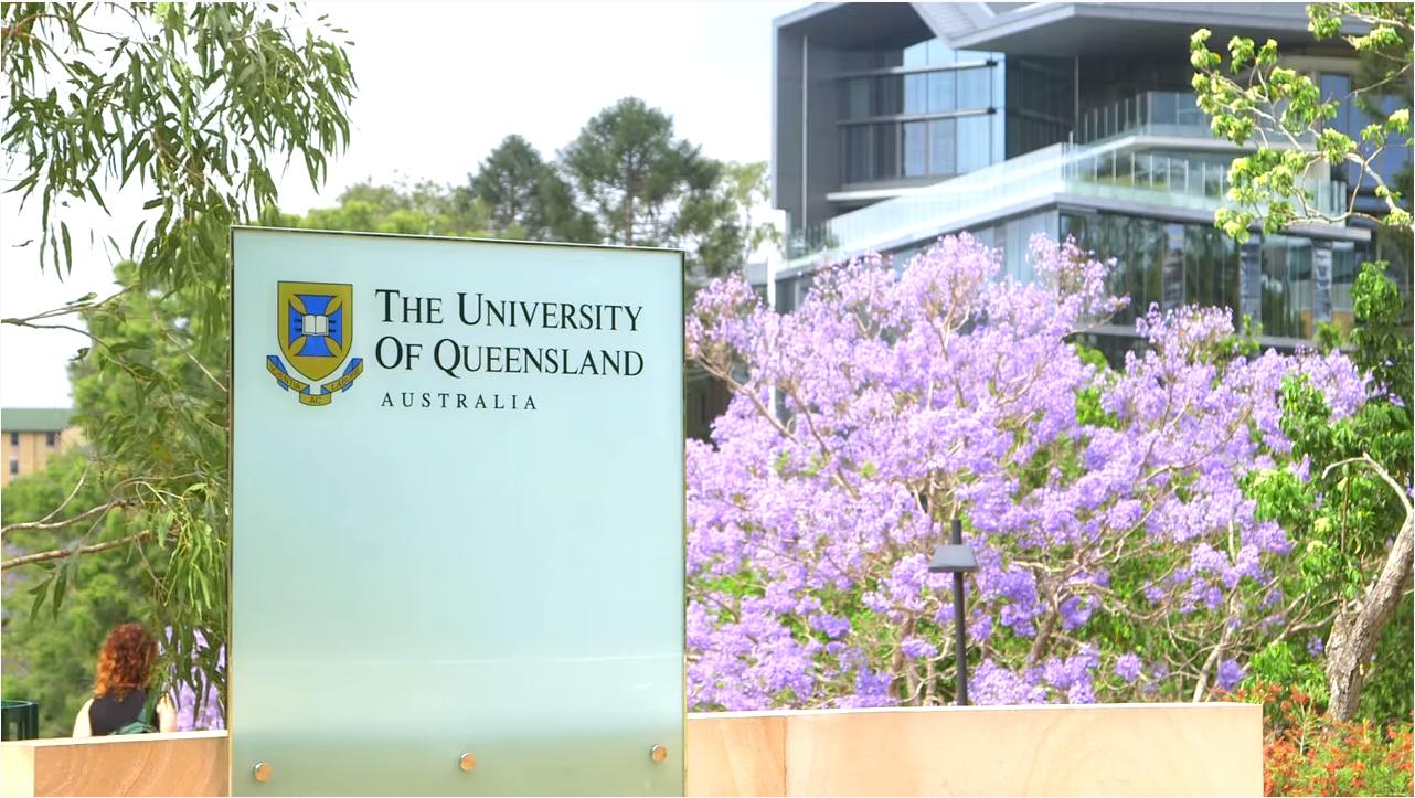 昆士兰大学圣露西亚分校.png